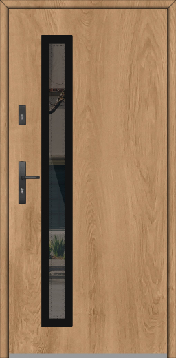 Fargo GD01B - contemporary exterior door